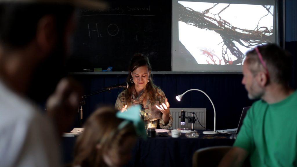 Water Bodies, School of Evolution, 2018. Photo: Lou Lou Sainsbury